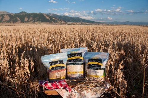 It's National Oatmeal Month! What's the big deal about Gluten-Free Purity Protocol Oats. Does it really matter?