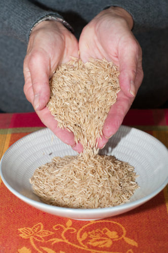 Got Gut Issues? More Great News About GFP Glyphosate-Free Oats
